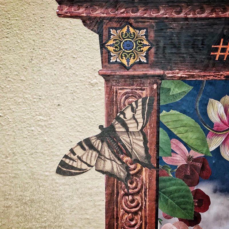 Un détail du visuel Le printemps avec un papillon